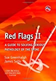 51vGF3OzEJL. SL160  Using Red Flags To Improve Clinical Reasoning