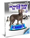 img - for How To Train your Weimaraner book / textbook / text book