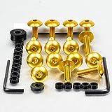 Aluminium Fairing Kit Suzuki TL1000S Gold