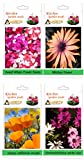 Alkarty sweet william mixed, mesembryanthemum / midday flower, poppy california mixed and dimorphotheca white star (winter) seed pack of 20