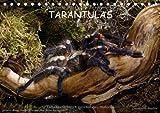 Tarantulas 2014 / UK-Version - Author: Trapp Benny