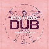 The Evolution of Dub Vol.4 (Box-Set)