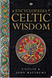 img - for The Encyclopaedia of Celtic Wisdom : A Celtic Shaman's Sourcebook book / textbook / text book
