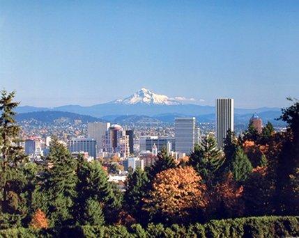 Portland Rose Garden And Mt. Hood