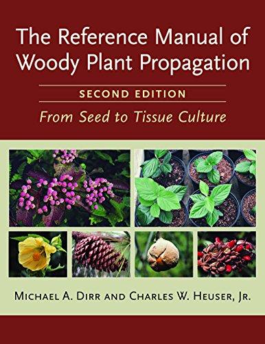 Dicot Woody Stem Images Manual Guide