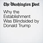 Why the Establishment Was Blindsided by Donald Trump | Danielle Allen
