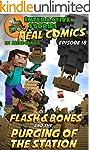 Minecraft Comics: Flash and Bones and...