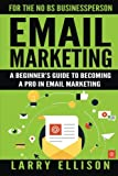 Email Marketing: A Beginners Guide to Becoming a Pro In Email Marketing (Volume 1)
