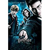 Poster For Kids Room. Harry Potter Movie Novel Posters Collection, Fan Art. Poster-24