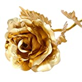 BoRuo 24K 6 Inch Handmade Gold Foil Rose Best Gift for Valentine's Day, Mother's Day, Birthday, and Last Forever!