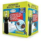 Tanglefoot Japanese Beetle Trap with Floral Lure & Bait