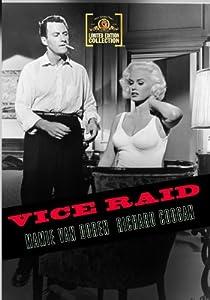 Vice Raid