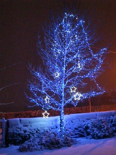 900er LED blaue Lichterkette, Außen – verknüpfbar, Typ C