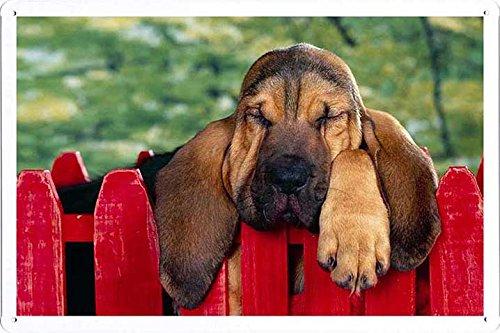 metal-poster-cartel-plato-decoracion-de-la-pared-cartel-de-chapa-sign-de-hush-puppy-2030cm