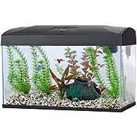 Fish R Fun Rectangular Aquarium, 58.5 x 30.5 x 38.5 cm, Black
