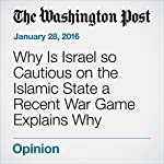 Why Is Israel so Cautious on the Islamic State a Recent War Game Explains Why | David Ignatius