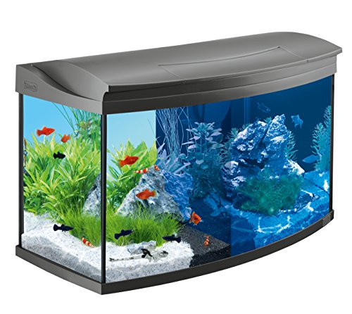 tetra-aquaart-evolution-line-led-aquarium-komplett-set-100-liter-anthrazit-moderne-led-beleuchtung-i