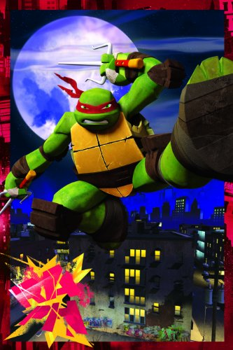 Teenage Mutant Ninja Turtles Raphael Framed 3D Hanging Wall Art, 11-Inch by 17-Inch
