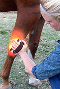 Amazon Com Animal Infrared Therapy Light For Horses Cats