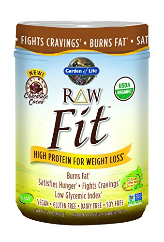 garden of life raw fit protein powder chocolate 450 gram