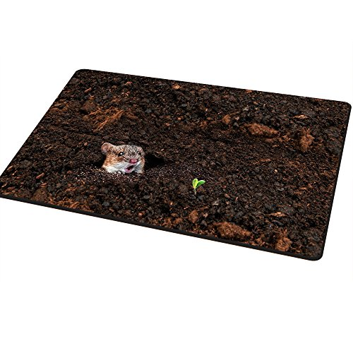 la-vita-di-primavera-zerbino-da-lanchuon-40x60cm-divertenti-zerbini-entry-way-tappeto