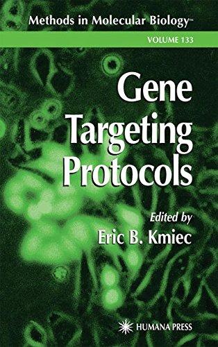Gene Targeting Protocols (Methods in Molecular Biology)