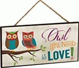 1 X Owl You Need Is Love! Two Owls on Branch Decorative Hanging Sign – Made in USA