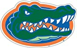 NCAA Florida Gators 12-Inch Magnet