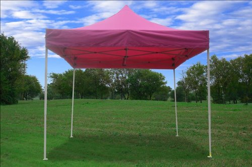 Low Price 10x10 Pop up 4 Wall Canopy Party Tent Gazebo Ez Pink F & bangomadosa13: Find Best Price 10x10 Pop up 4 Wall Canopy Party ...