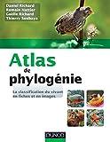 Atlas de phylogénie - La classification du vivant en fiches et en images