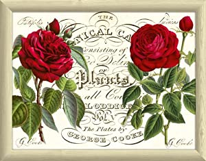 Botanic Rose Lap Tray