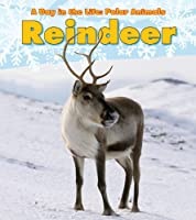 Reindeer (Heinemann Read and Learn)