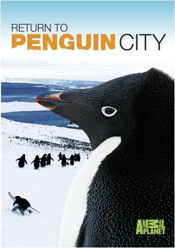 Return to Penguin City / Возвращение в город пингвинов (2007)