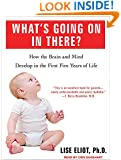 What's Going on in There?: How the Brain and Mind Develop in the First Five Years of Life