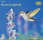 Hummingbirds Wall Calendar (2015)