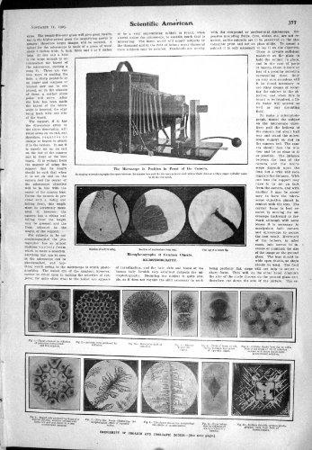 1905 Uniformity Organic Inorganic Bodies Microphotography Science Microscope
