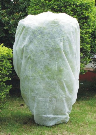agfabric-95oz-fabric-of-84x72-plant-cover-and-garden-fleece-for-frost-protection