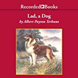 Image of Lad: a Dog