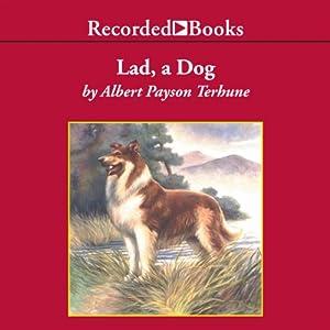 Lad, a Dog | [Albert Payson Terhune]