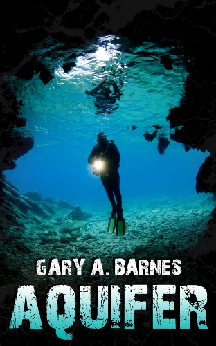 Aquifer: A Novel