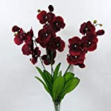 A BUSH of ARTIFICIAL RED BUTTERFLY ORCHIDS - 5 STEMS