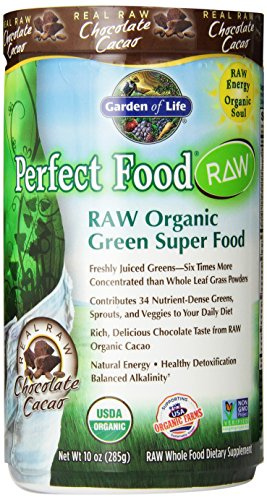 Garden Of Life Perfect Food Raw Organic Chocolate Powder 285g Powder