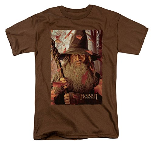 The Hobbit Lord Of The Rings Gandalf Poster Movie Adult T-Shirt Tee