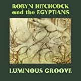 Luminous Groove