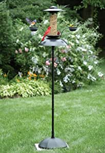 Zenith Innovation 003 Oasis Bird Feeder