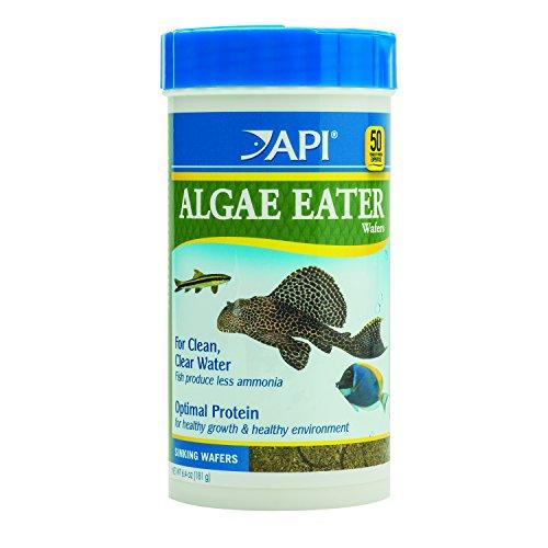 API Algae Eater Alage Wafer, 6.4-Ounce (Api Fish Food compare prices)
