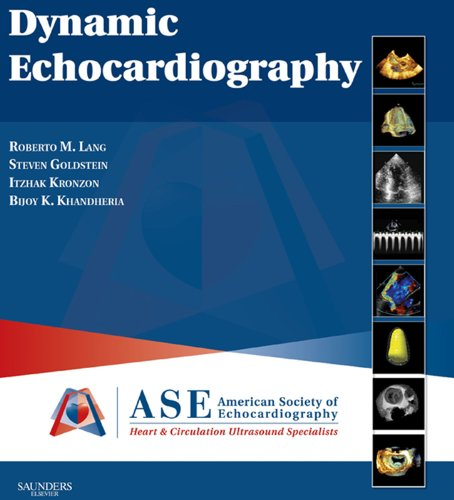 Dynamic Echocardiography