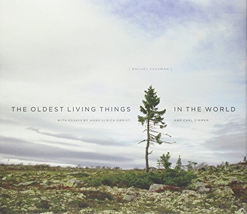 Download The Oldest Living Things in the World