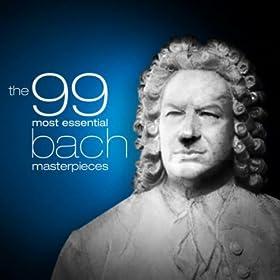 Sonata No. 1 for Solo Violin in G Minor, BWV 1001: IV. Presto