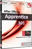 Class on Demand: After Effects Apprentice 301 Online Streaming Educational Training Tutorial with Chris & Trish Meyer, 99926